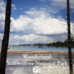 "Image of the Grand Prismatic with the text ""Wonderland: Yellowstone National Park"""