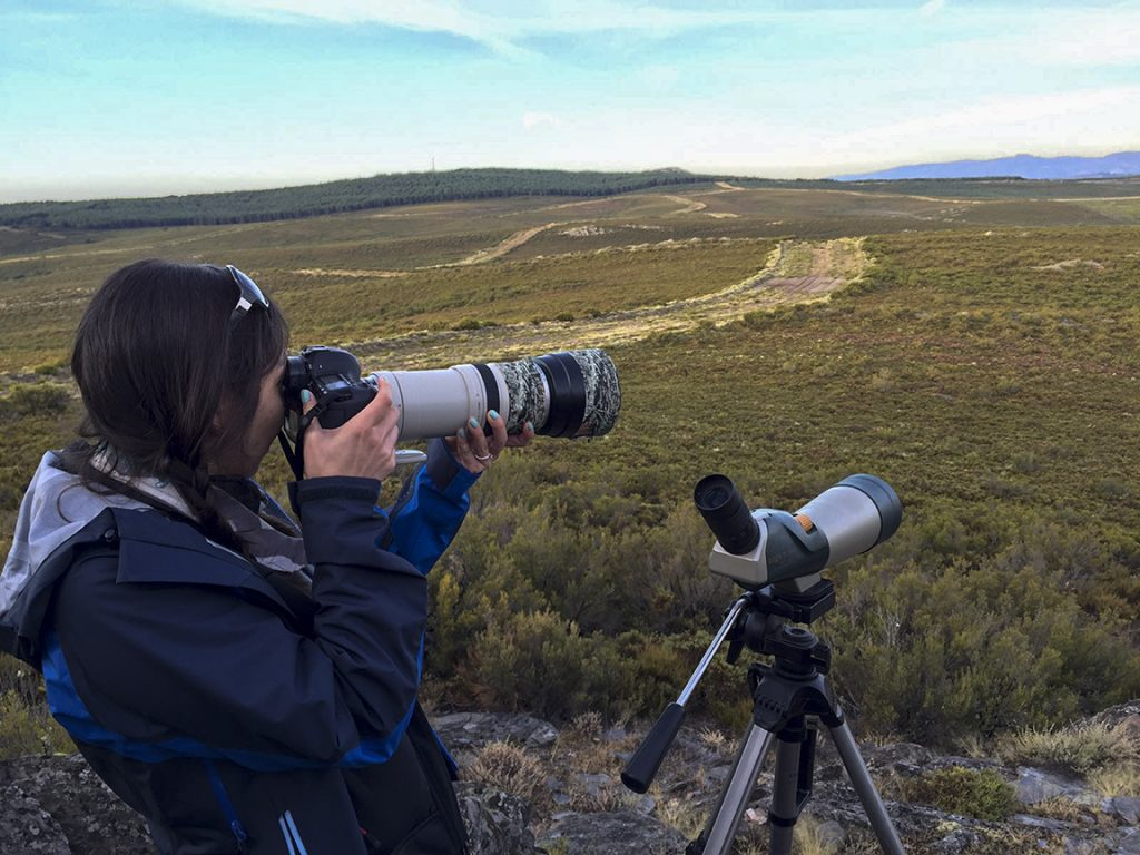 A woman on the left wearing a dark blue jacket holding a large camera. She is turned away from the viewer as she photographs animals in the distant hills.