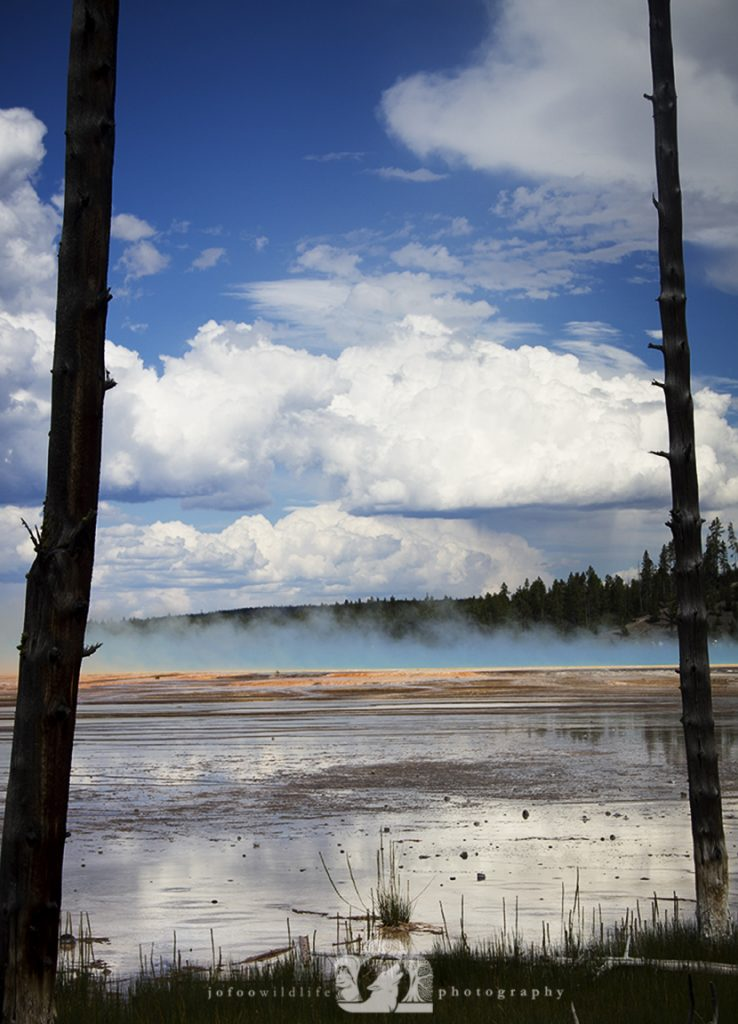 2011-08-04-005-JoFoo-Wildlife-Photography-Outdoors-Yellowstone-Landscape-Gazing-Across-the-Grand WR